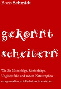 boris_schmidt_gekonnt_scheitern